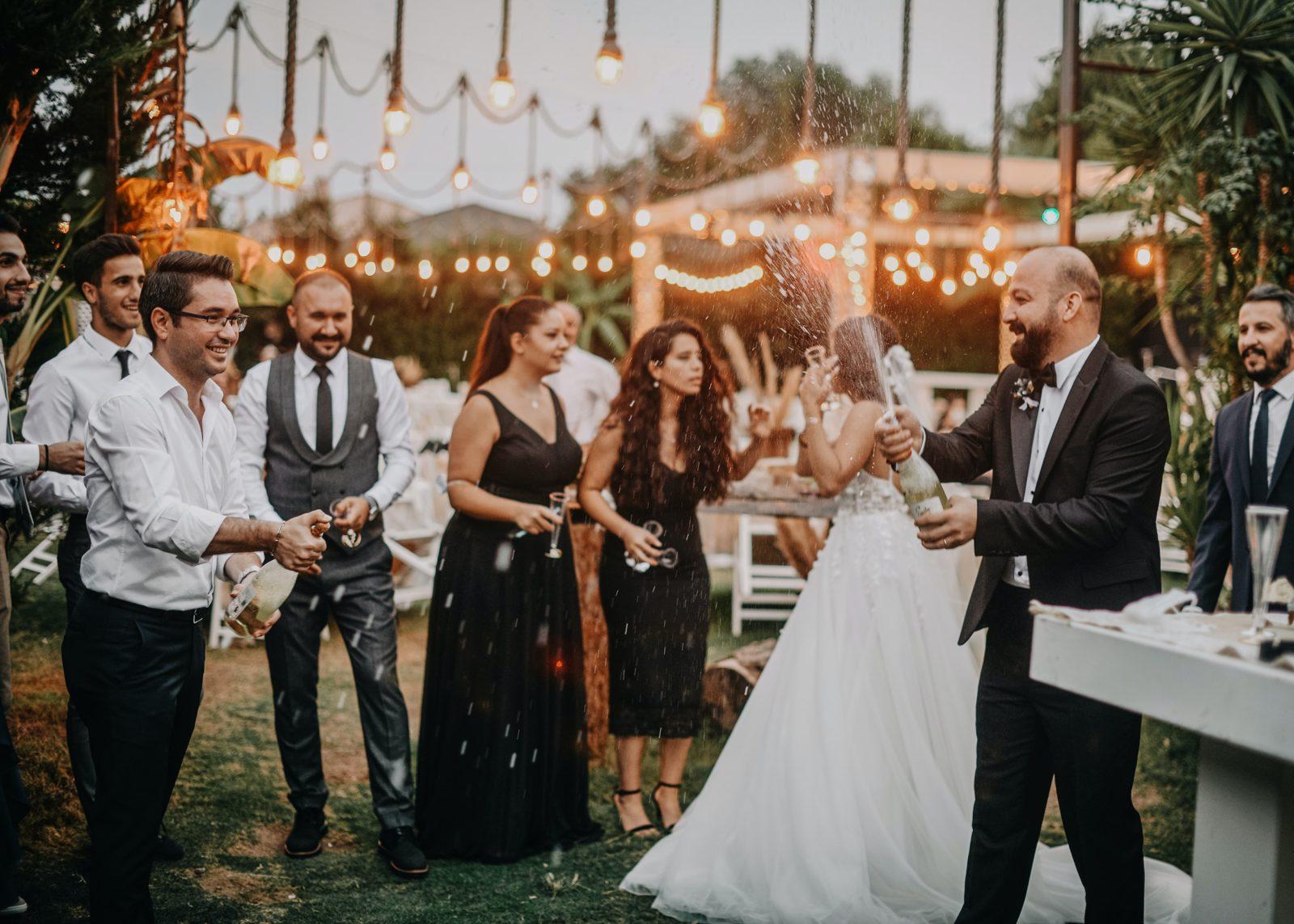 свадьба, шампанское, невеста, как выбрать тамаду