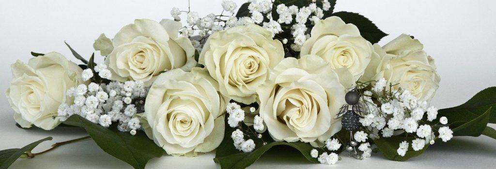 розы, белые розы, любовь, отношения, фен-шуй