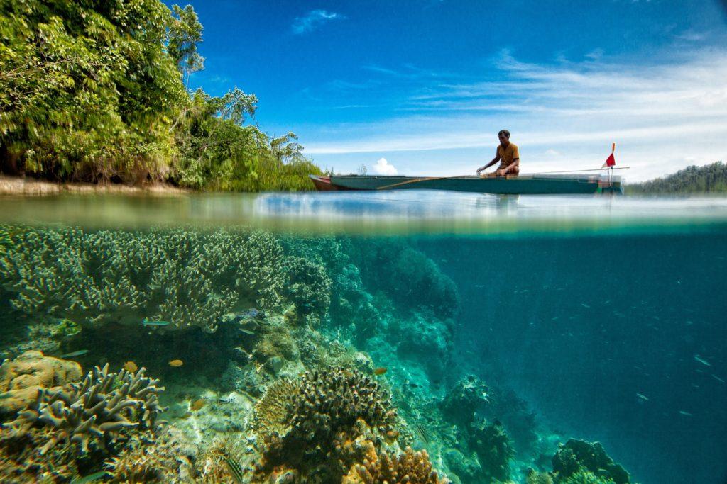 остров Бали, подводный мир, побережье острова, прогулка, свадебное путешествие