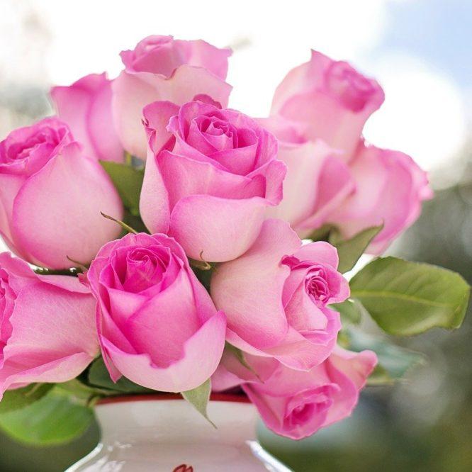 розы, цветы, розовая свадьба